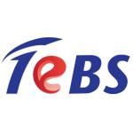Total eBiz Solutions